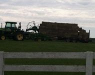 Bales Ready for Loft